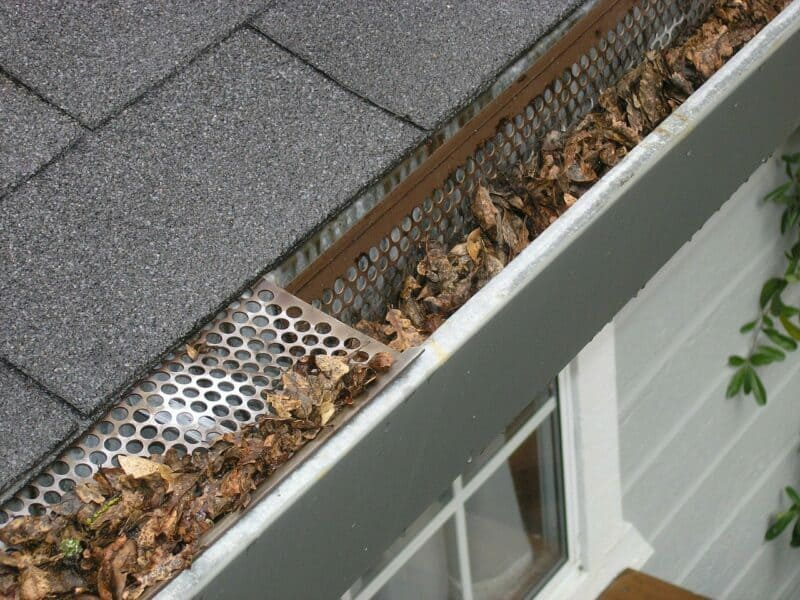 Dry brown leaves cover the gutter of a home outside.