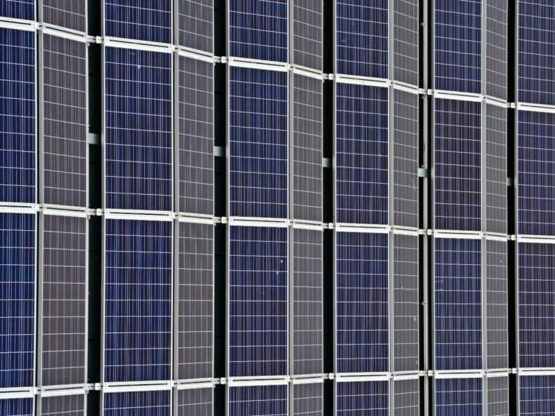 rows of solar panel cells