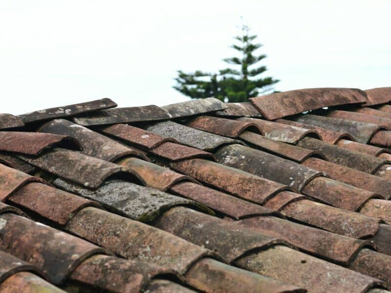 Red clay tiles on a roof.