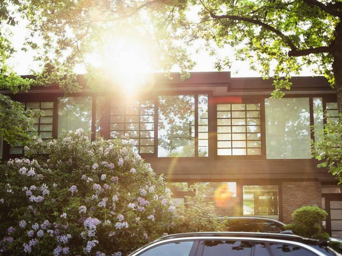 Sunshine is poking through the tree branches outside of a modern home.