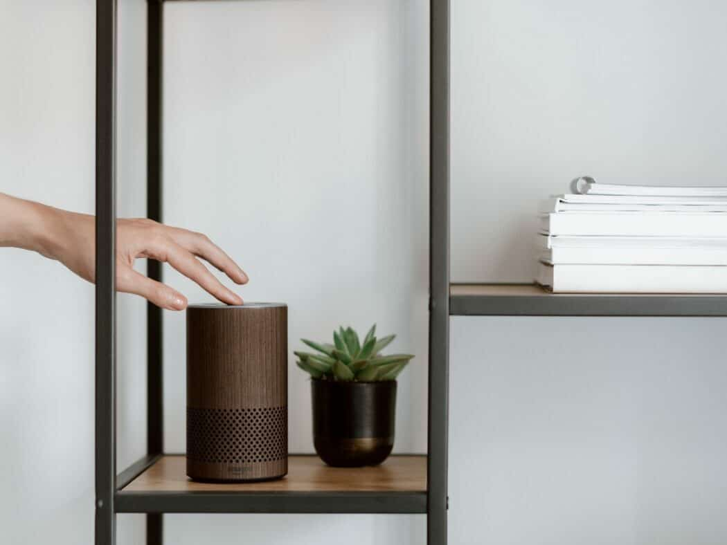 an alexa on a shelf next to a plant