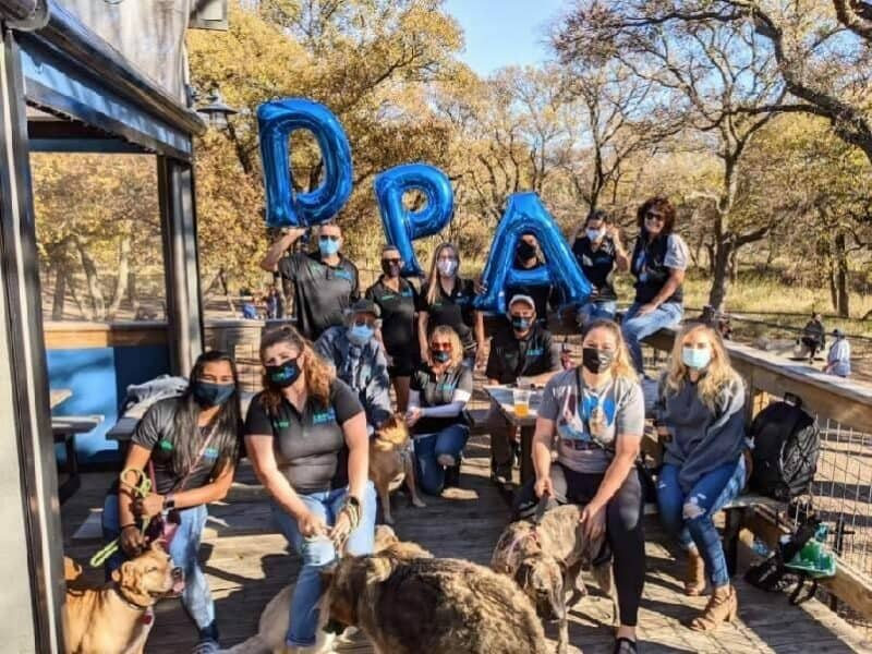 Volunteers for Dallas Pets Alive sitting outside with dogs.