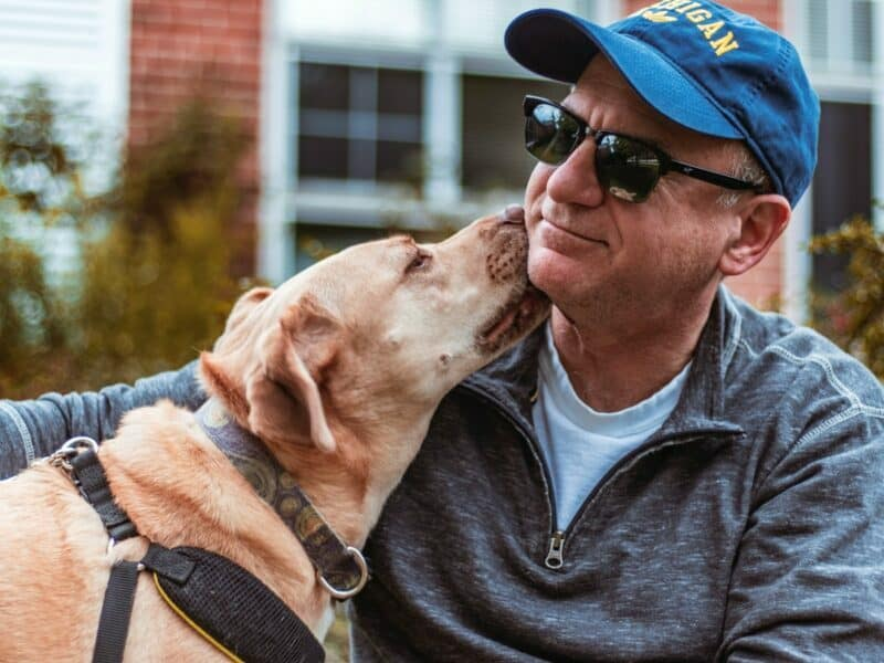 A dog owner smirks as his yellow Labrador licks his cheek.