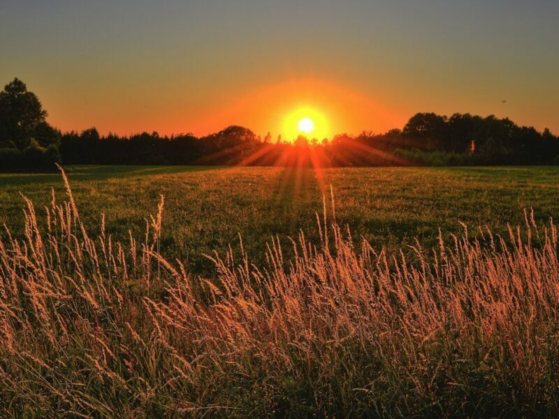 a sunset or a sunrise with in a field
