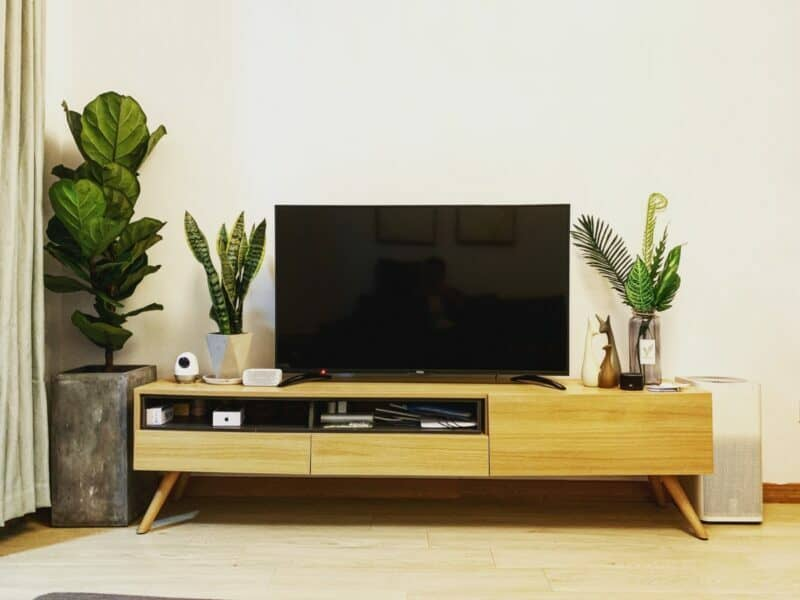 A flat-screen television is sitting on a midcentury modern stand that's also holding plants and a security camera.