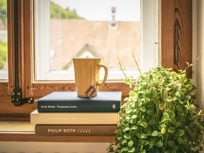 coffee mug on a stack of books by a window