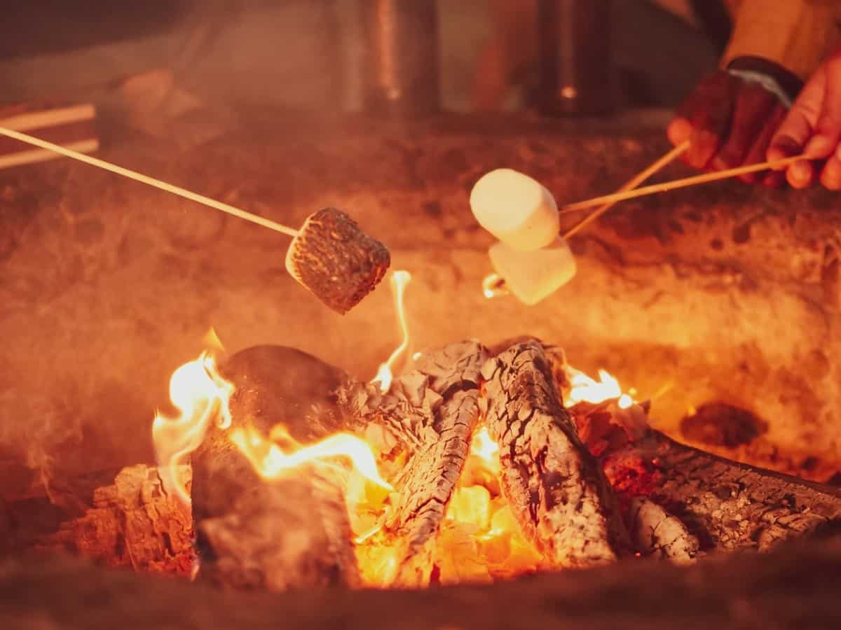 a closeup of a backyard fire pit with marshmallows roasting